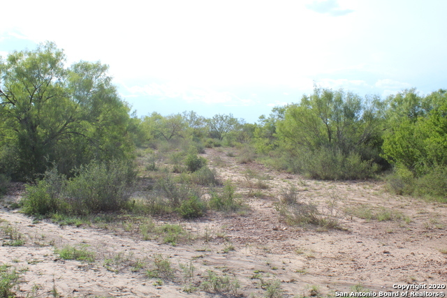 Off Market | 10333 FM 2779 - Tract 19 Pearsall, TX 78061 22