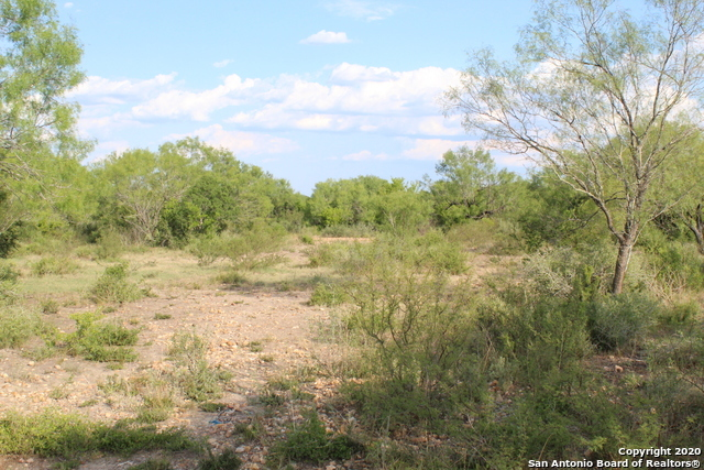Off Market | 10333 FM 2779 - Tract 19 Pearsall, TX 78061 23