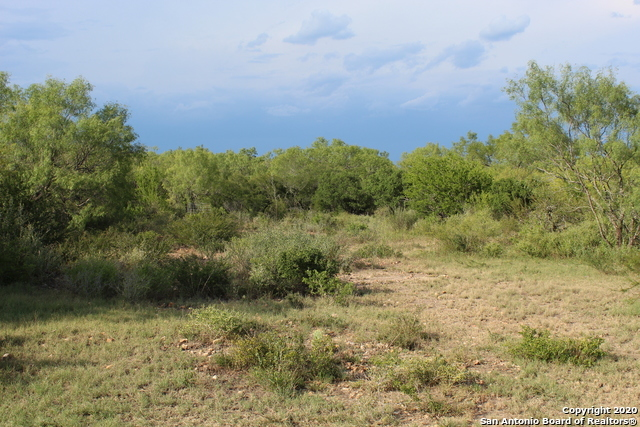 Off Market | 10333 FM 2779 - Tract 19 Pearsall, TX 78061 25