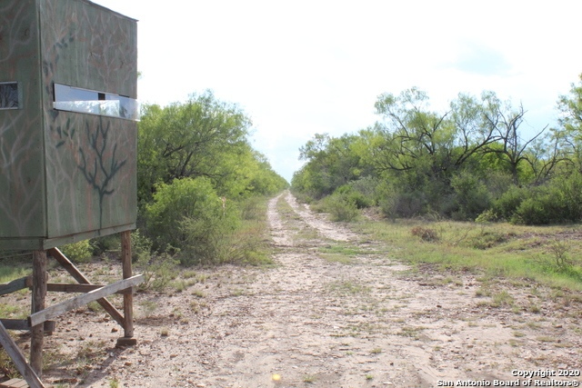 Off Market | 10333 FM 2779 - Tract 19 Pearsall, TX 78061 28