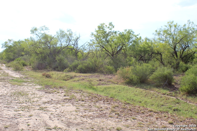 Off Market | 10333 FM 2779 - Tract 19 Pearsall, TX 78061 29