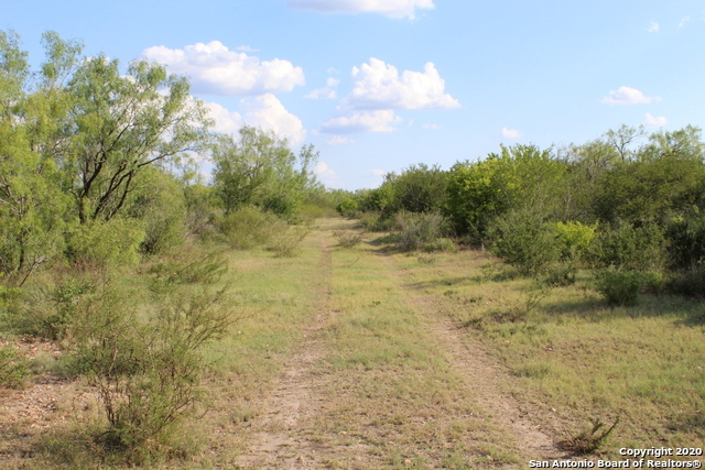 Off Market | 10333 FM 2779 - Tract 19 Pearsall, TX 78061 9