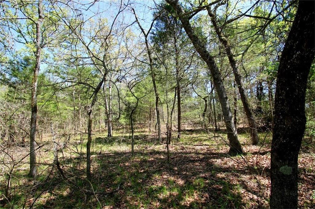 Sold Property   TR 4 CR 1307  Emory, Texas 75440 0