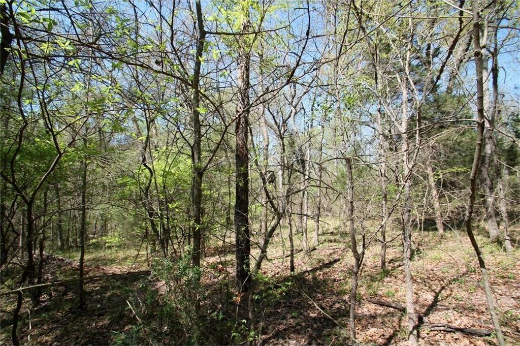 Sold Property   TR 4 CR 1307  Emory, Texas 75440 1