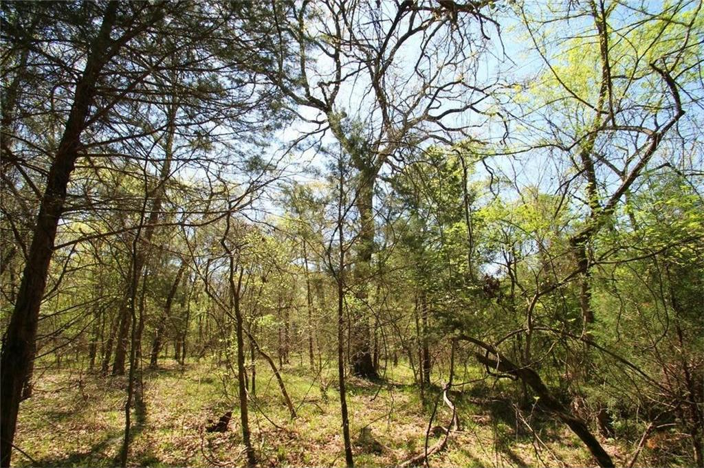 Sold Property   TR 4 CR 1307  Emory, Texas 75440 14