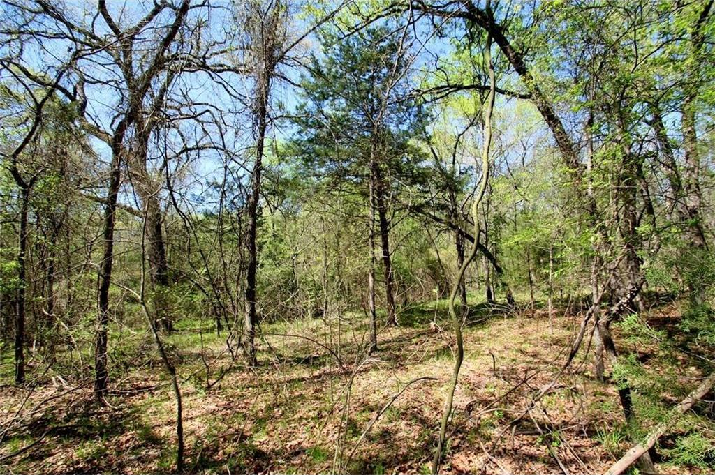 Sold Property   TR 4 CR 1307  Emory, Texas 75440 15