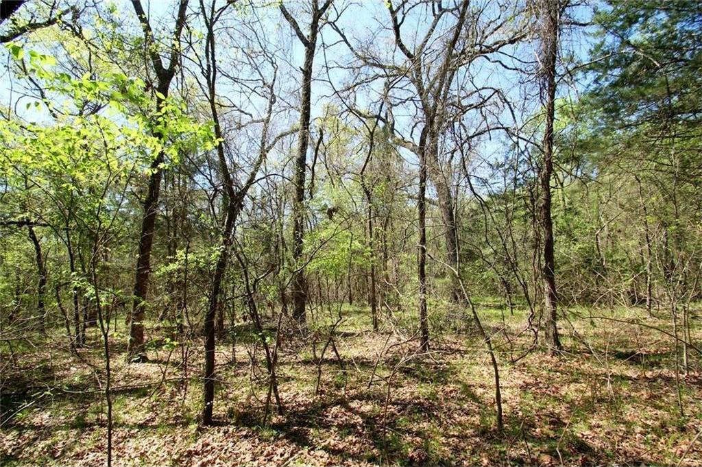 Sold Property   TR 4 CR 1307  Emory, Texas 75440 16