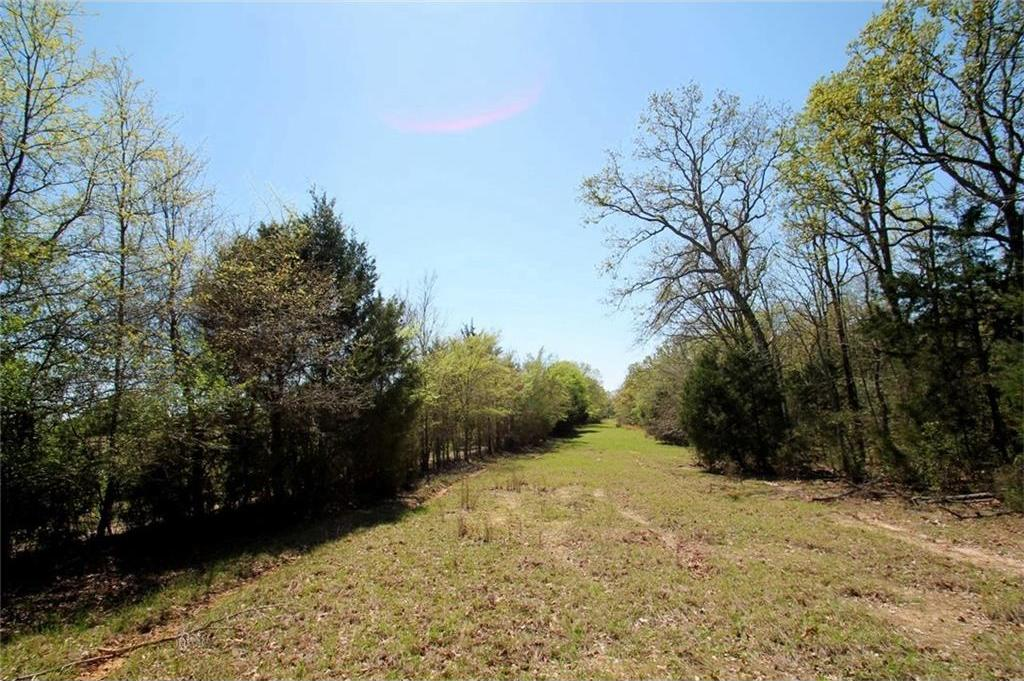 Sold Property   TR 4 CR 1307  Emory, Texas 75440 22