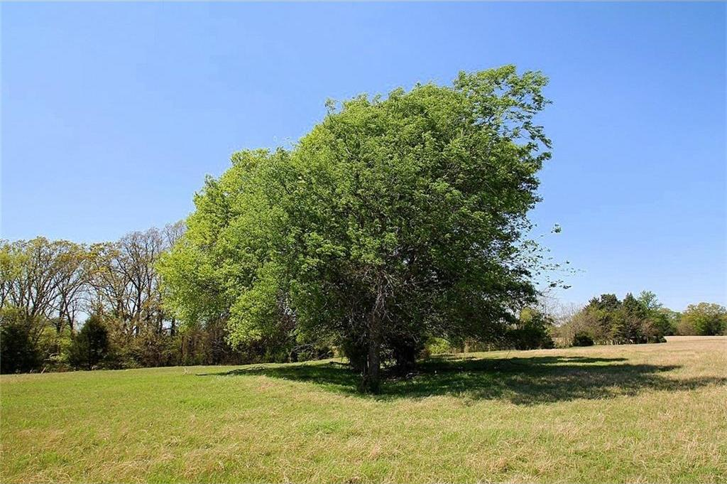 Sold Property   TR 4 CR 1307  Emory, Texas 75440 29