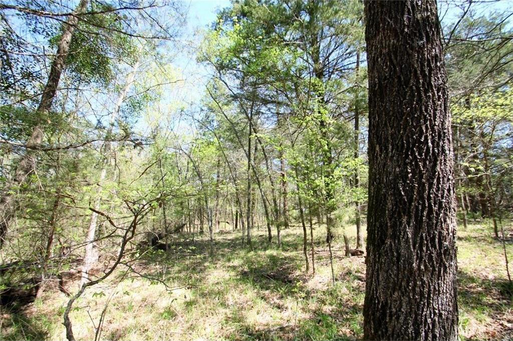 Sold Property   TR 4 CR 1307  Emory, Texas 75440 3