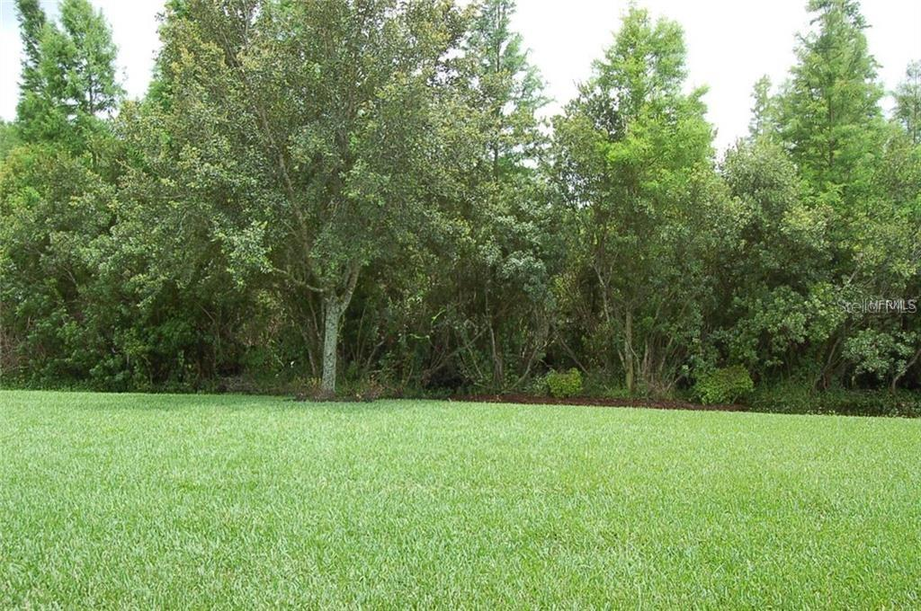 Leased | 8806 HANDEL  LOOP LAND O LAKES, FL 34637 19