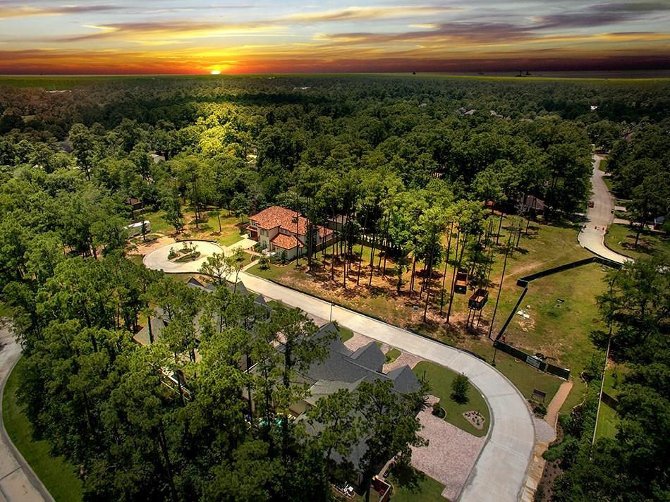 Active | 20 Honey Daffodil Place The Woodlands, Texas 77380 0