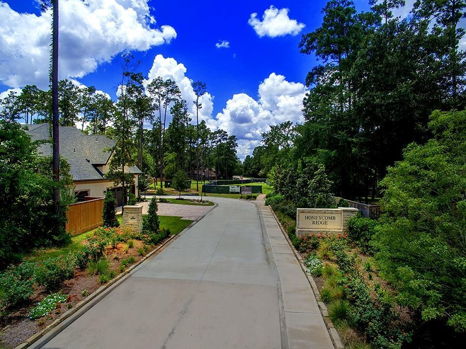 Active | 20 Honey Daffodil Place The Woodlands, Texas 77380 7
