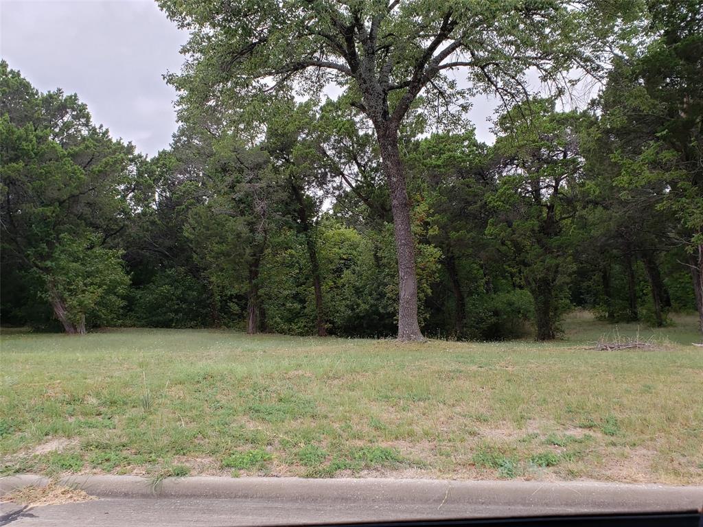 Active | 819 Bluff Ridge  Drive #802 Cedar Hill, TX 75104 3