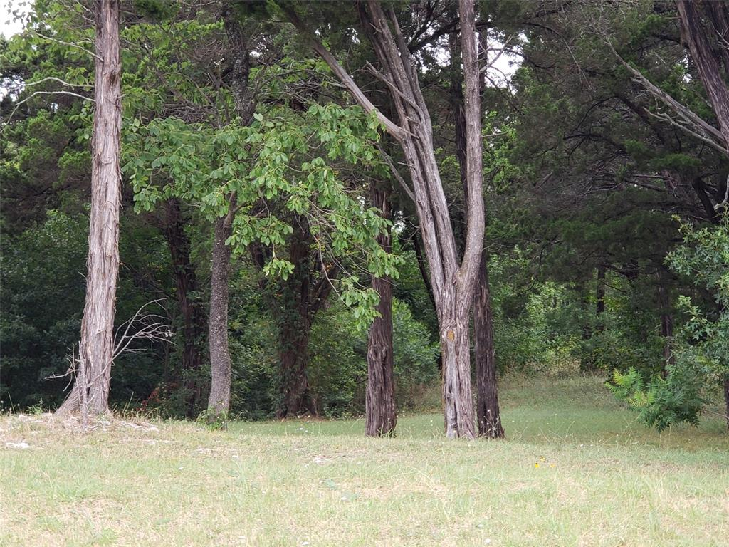 Active | 819 Bluff Ridge  Drive #802 Cedar Hill, TX 75104 4