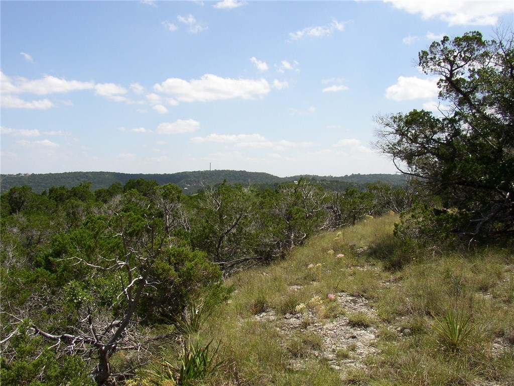 Withdrawn | 10608a Turkey Bend Drive Jonestown, TX 78645 11