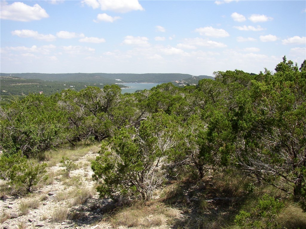 Withdrawn | 10608a Turkey Bend Drive Jonestown, TX 78645 16