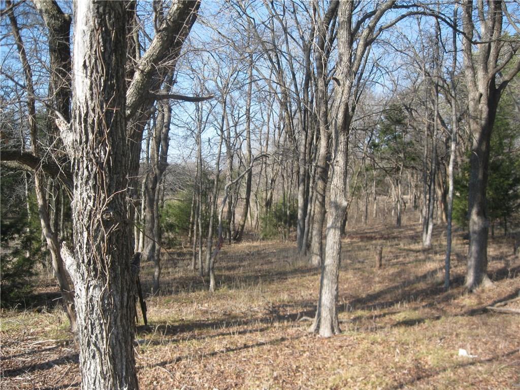 Sold Property | 1727 Pebble Beach Lane Cedar Hill, Texas 75104 10