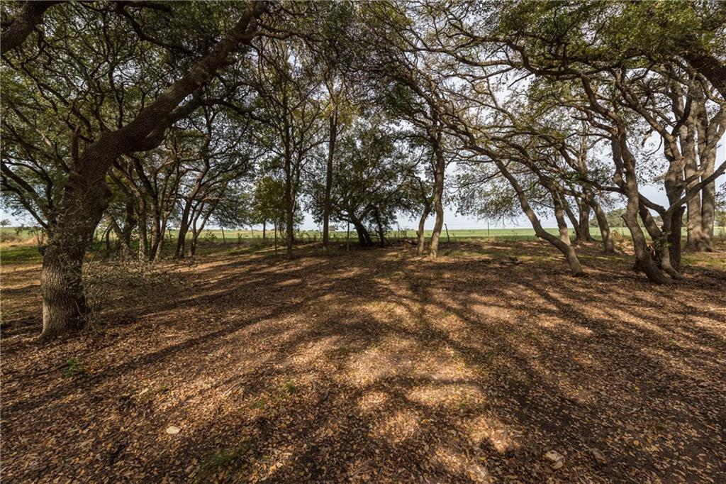 Sold Property | 1515 County Road 106 Georgetown, TX 78626 32
