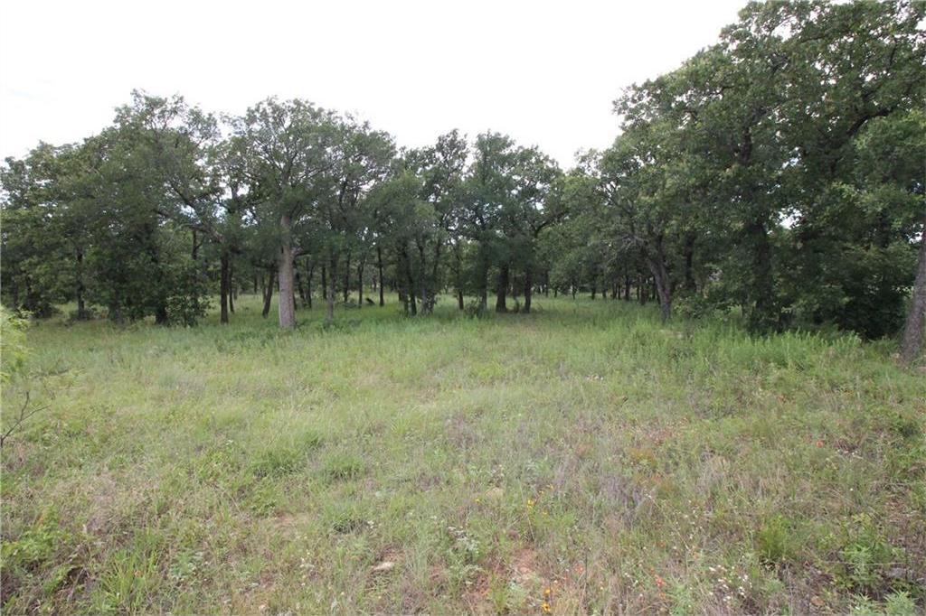 Active | L 113 Ridgeline Drive Chico, TX 76431 4