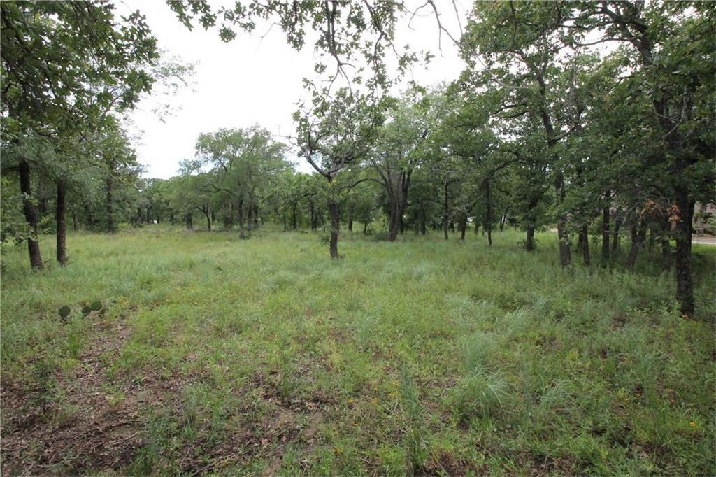 Active | L 113 Ridgeline Drive Chico, TX 76431 5