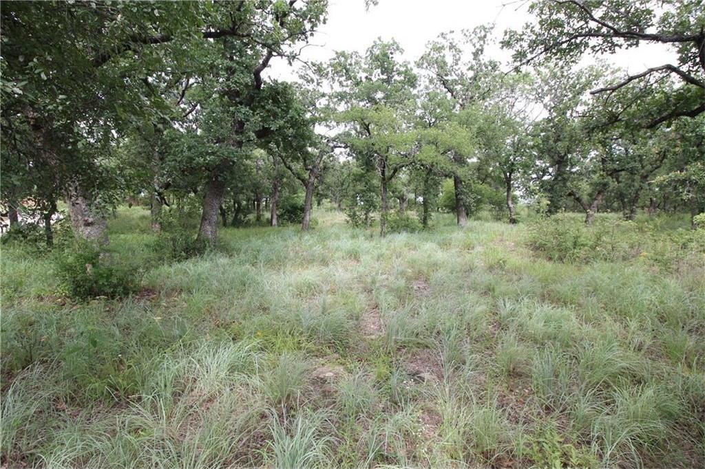 Active | L 113 Ridgeline Drive Chico, TX 76431 7