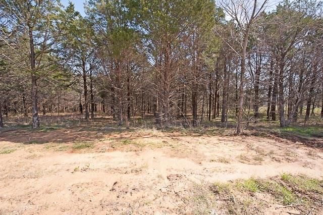 Sold Property | 92 Barrington  Circle Gordonville, TX 76245 4