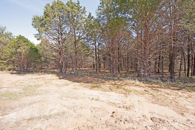 Sold Property | 92 Barrington  Circle Gordonville, TX 76245 5