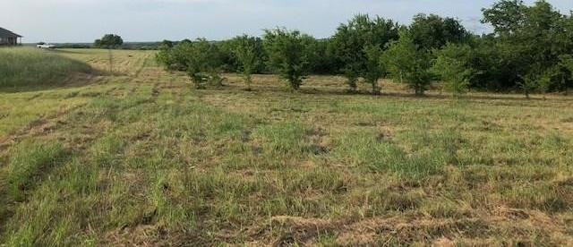 Active | 0000 County Road 648  Farmersville, TX 75442 2
