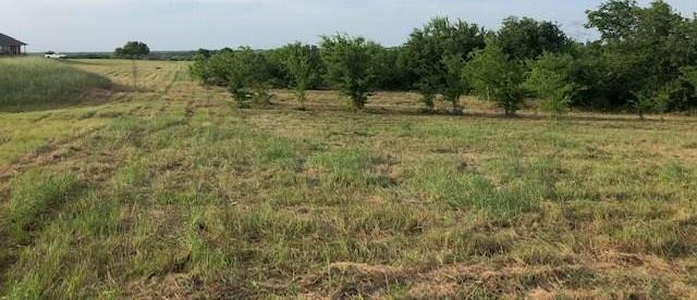 Active | 0000 County Road 648  Farmersville, TX 75442 4