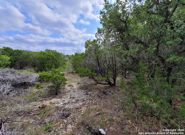 Off Market | 199 Private Road 1730 Mico, TX 78056 8