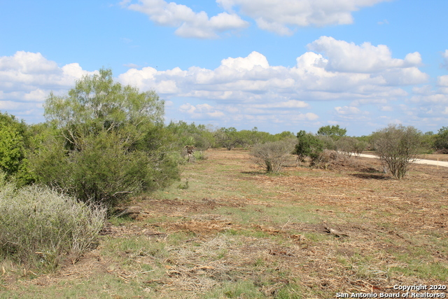 New | 10333 FM 2779 - Tract 3 Pearsall, TX 78061 11