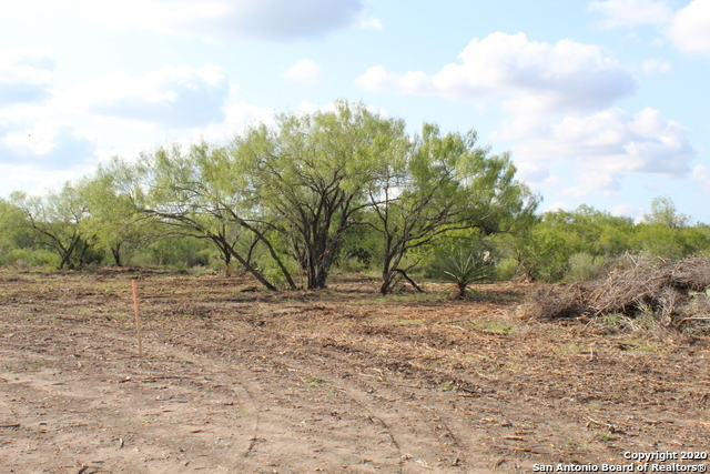 New | 10333 FM 2779 - Tract 3 Pearsall, TX 78061 12
