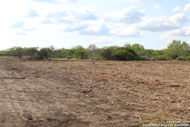 New | 10333 FM 2779 - Tract 3 Pearsall, TX 78061 15