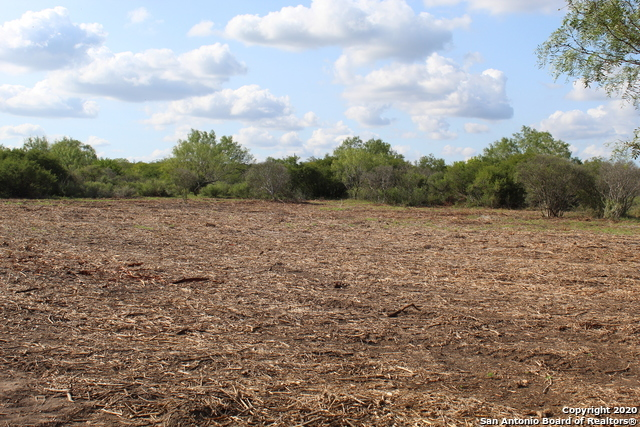New | 10333 FM 2779 - Tract 3 Pearsall, TX 78061 16