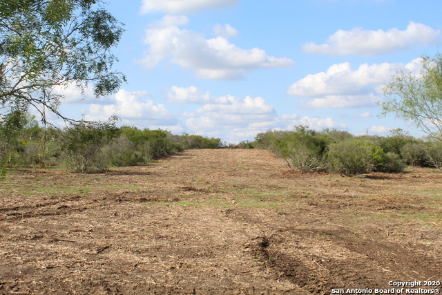New | 10333 FM 2779 - Tract 3 Pearsall, TX 78061 17
