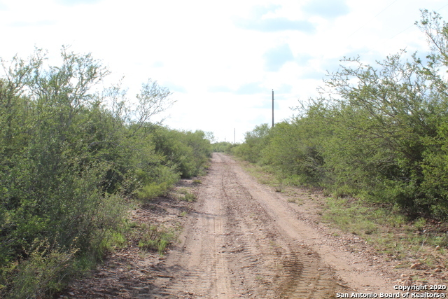 New | 10333 FM 2779 - Tract 3 Pearsall, TX 78061 18