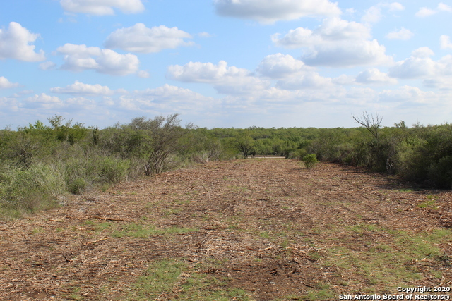 New | 10333 FM 2779 - Tract 3 Pearsall, TX 78061 4