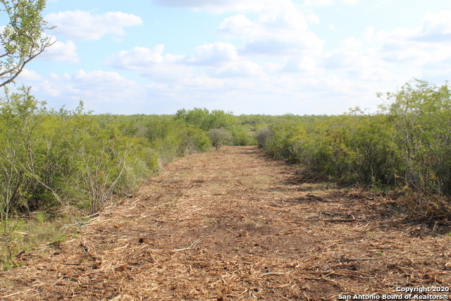 New | 10333 FM 2779 - Tract 3 Pearsall, TX 78061 5