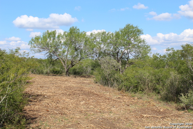 New | 10333 FM 2779 - Tract 3 Pearsall, TX 78061 7