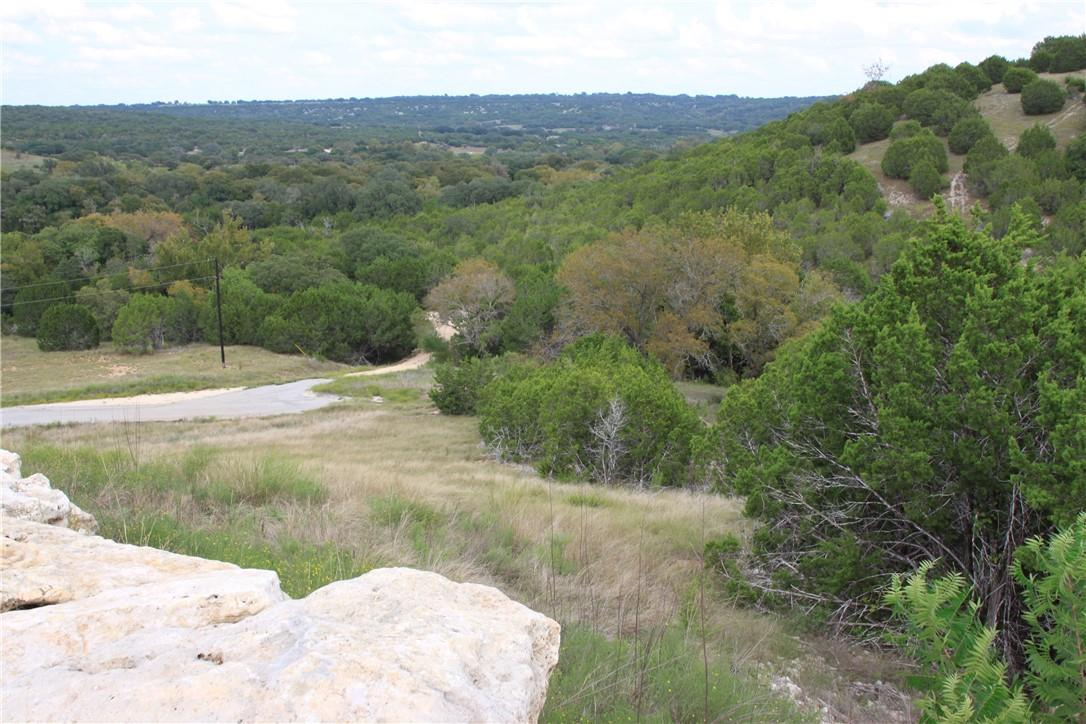 Active | Lot 100 Saddle Ridge  Drive Bertram, TX 78605 0