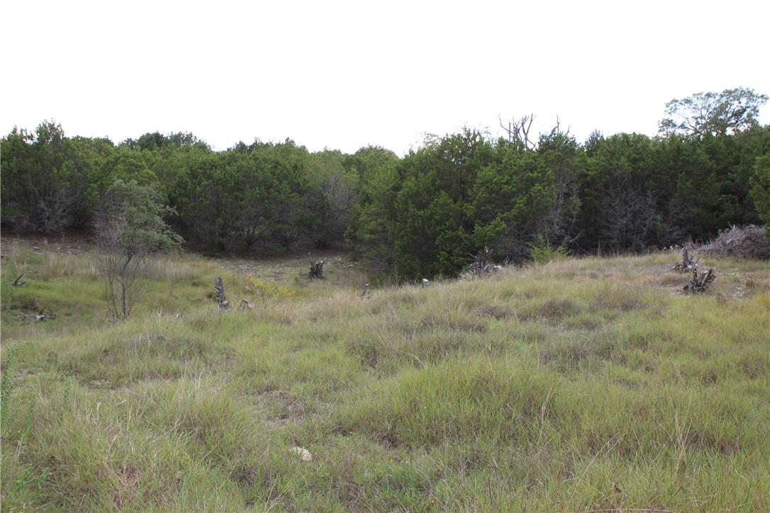Active | Lot 100 Saddle Ridge  Drive Bertram, TX 78605 15