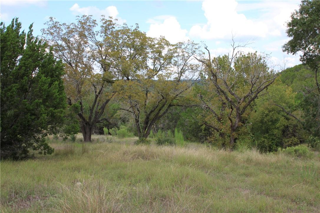 Active | Lot 100 Saddle Ridge  Drive Bertram, TX 78605 19