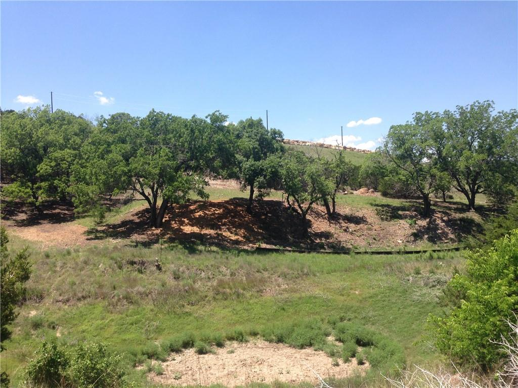 Active | Lot 100 Saddle Ridge  Drive Bertram, TX 78605 3