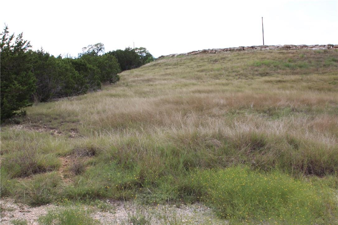 Active | Lot 100 Saddle Ridge  Drive Bertram, TX 78605 4