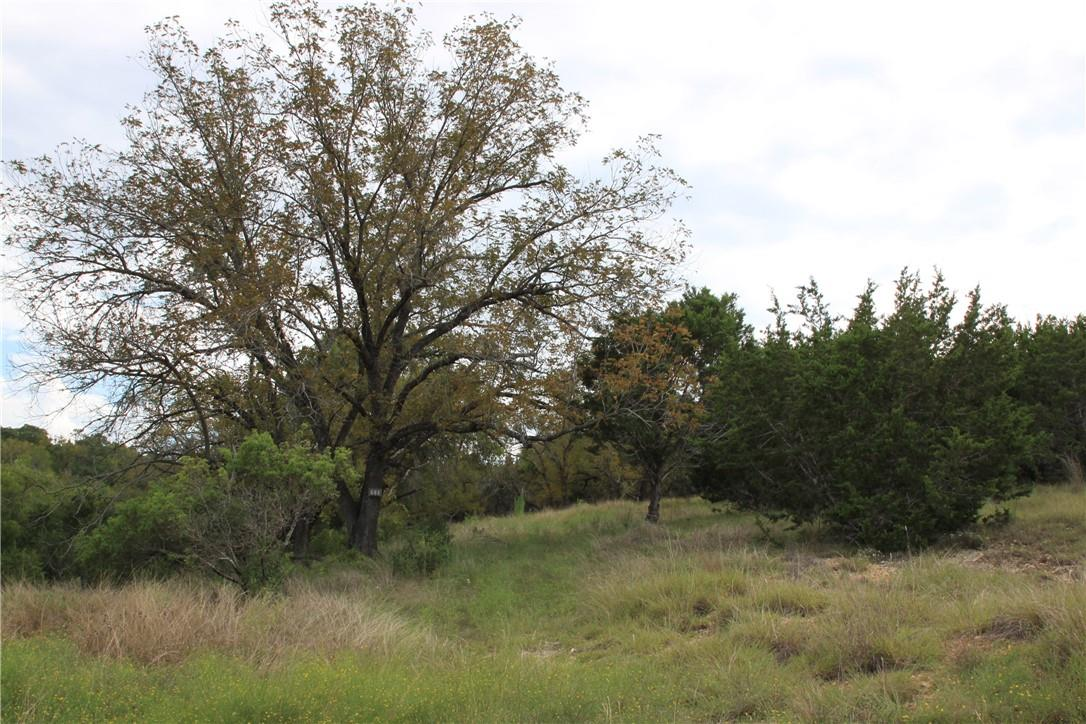 Active | Lot 100 Saddle Ridge  Drive Bertram, TX 78605 7