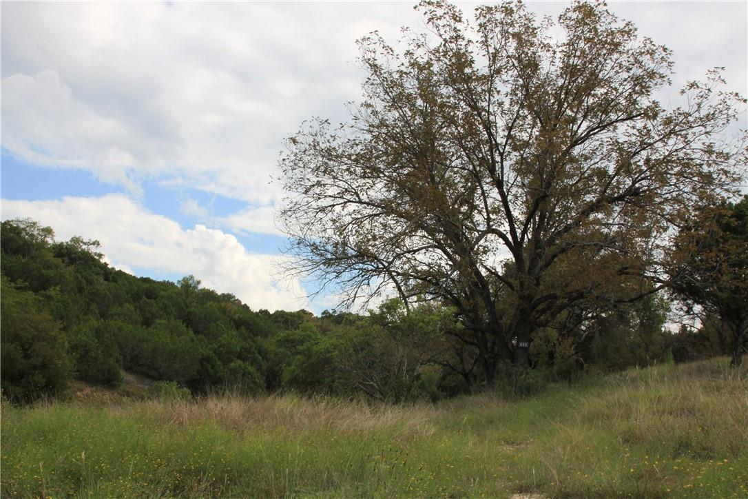 Active | Lot 100 Saddle Ridge  Drive Bertram, TX 78605 8