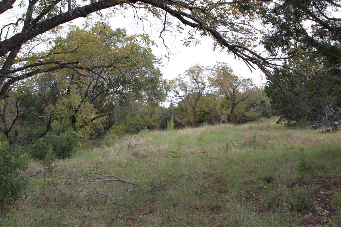 Active | Lot 100 Saddle Ridge  Drive Bertram, TX 78605 9