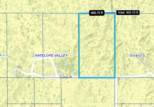 Closed | Vac/Colley Pl/Vic 96 Ste Juniper Hills, CA 93543 5