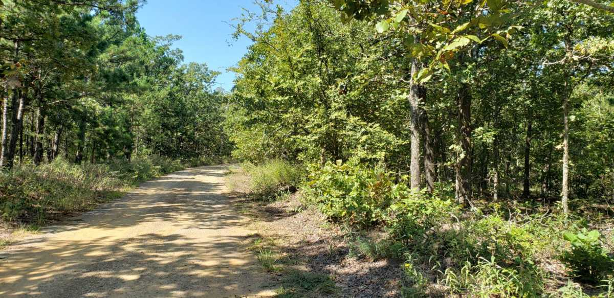 Pending | SE 180th Rd/Water Tower Rd Talihina, OK 74571 16